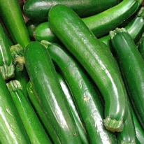 Courgettes F1 president 5 plug plants from